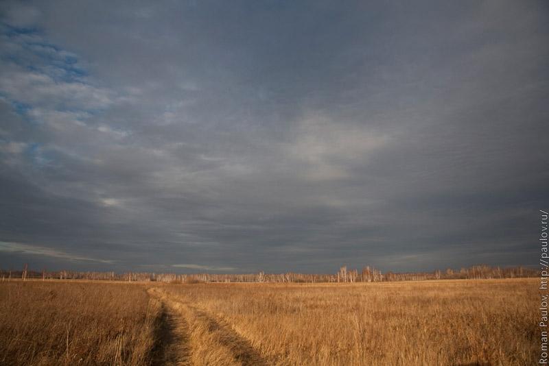 Антипинский Орловский Новосибирская область