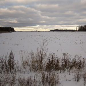 В Новосибирск пришёл первый снег